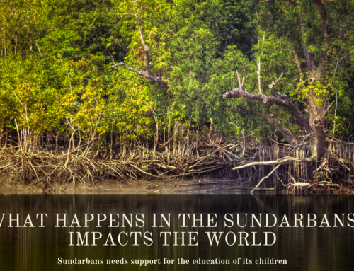 What Happens in the Sundarbans Impacts the World