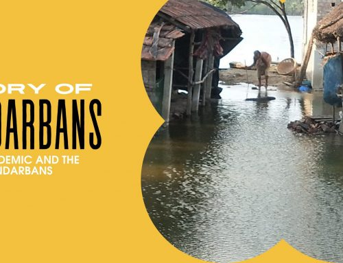 The Pandemic and the Sundarbans – By Siddhartha